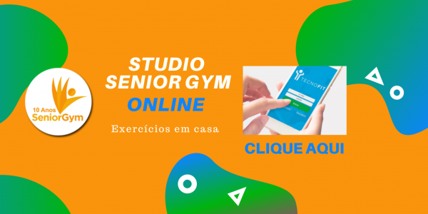 Senior Gym Online