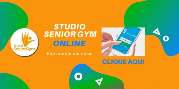 Senior Gym Online